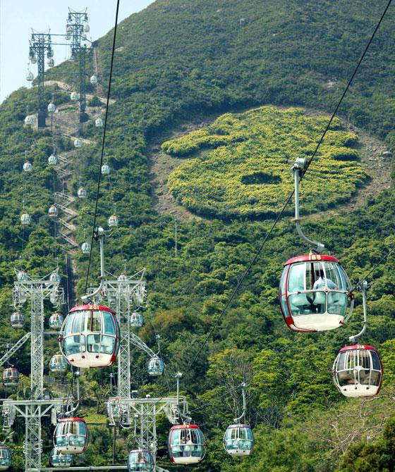 香港海洋公園- 體育康樂- 社區貢獻及慈善- 香港賽馬會